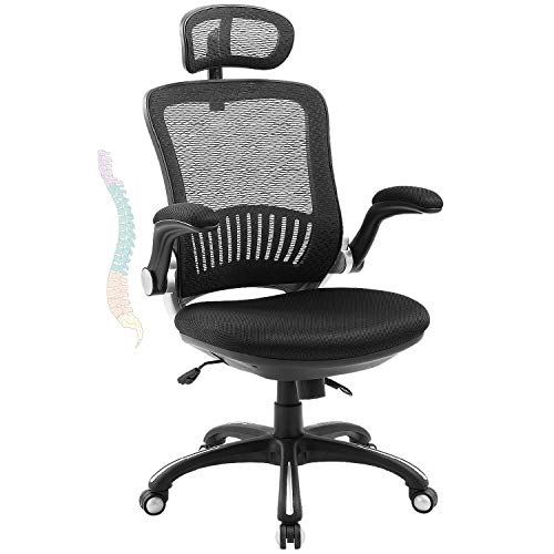 LORDWEY Ergonomic Office Chair, High Back Desk Chair Hold Up to 300IBS, Computer Chair with Adjustable Headrest, Backrest, Seat Height &Flip-up Armrests, Lumbar Support Executive Task Chair-Black
