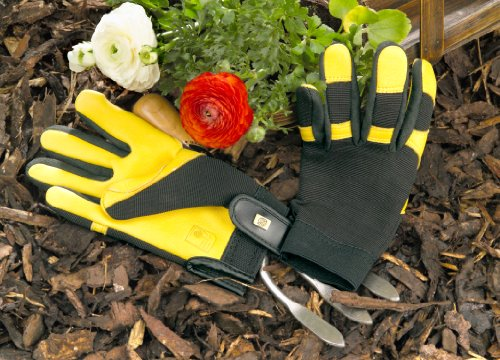 Gold Leaf Soft Touch Gloves- Gents