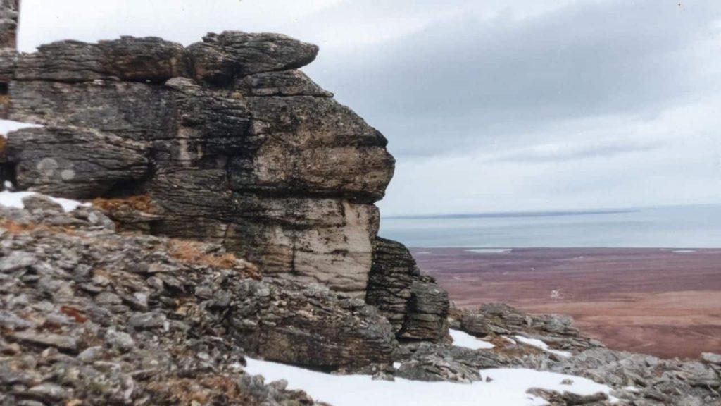 Wrangel Island in Russia