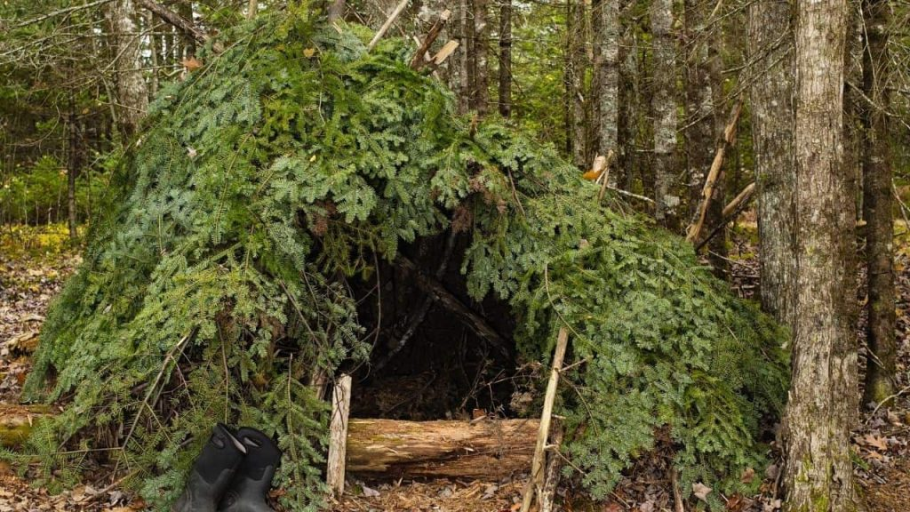shelter wilderness